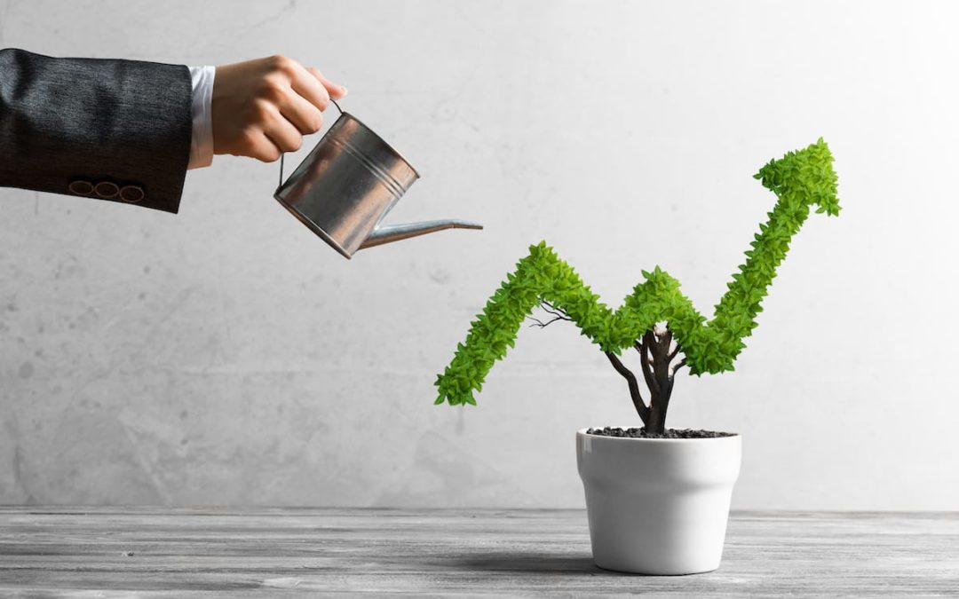 Growth strategies for oversaturated markets
