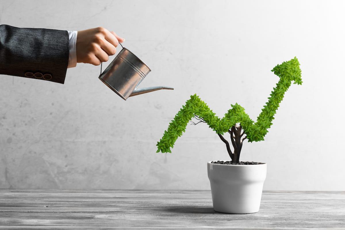 Wachstumsstrategien für übersättigte Märkte